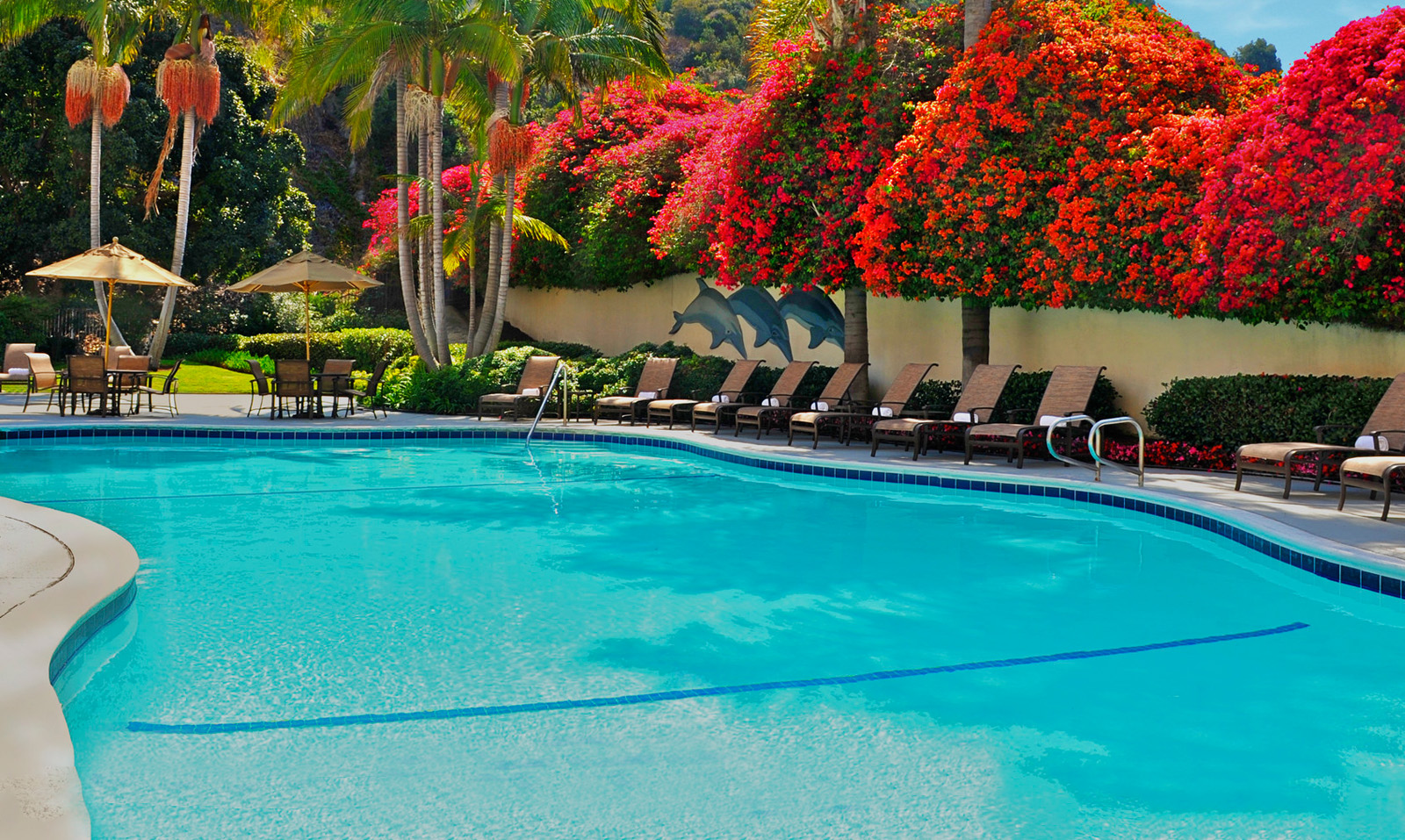 Sheraton Mission Valley San Diego Hotel Remington Hotels
